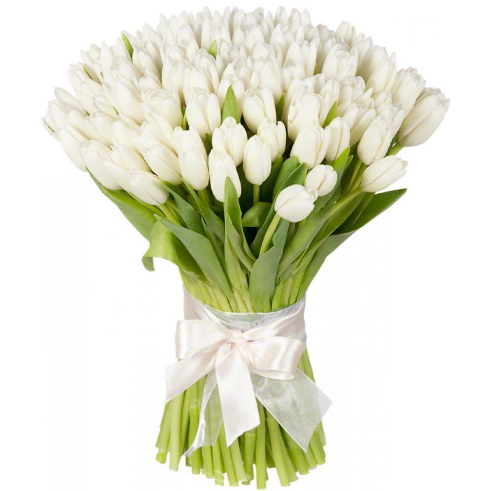 Букет из 101 белого тюльпана